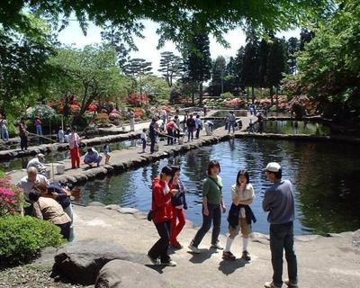 林養魚場 ますつり公園