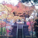 この秋カップルで行きたい【埼玉】おすすめデートスポット22選!定番から穴場まで
