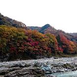 【埼玉】11月のおすすめ観光スポット20選!紅葉スポットも!