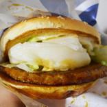 【激ウマ】マクドナルドてりやきマックバーガーに餅を挟むと激ウマハンバーガーになるぞ!