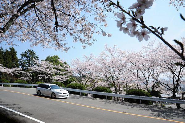 嵐山-高雄パークウェイ