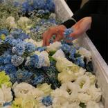 自分が死んだら棺に何を入れたいか。何が相応しいか。