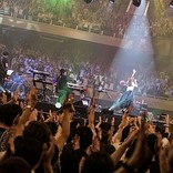 Aimer、新たな物語を紡ぎ始めた【Live in 武道館】を振り返る