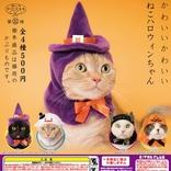 トリックオアトリートだニャ 猫が魔女やカボチャに変身できる「かわいい かわいい ねこハロウィンちゃん」が登場