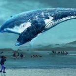 ぴあ映画初日満足度ランキング あのクジラの映画が人気に
