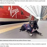 電車が大好き! 14歳の老犬に鉄道会社が制服をプレゼント(英)