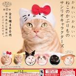 猫が「ハローキティ」や「シナモロール」に変身!猫専用のかぶりものに「サンリオキャラクターズ」が新登場