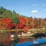 絶景紅葉に秋グルメ、紅葉露天も♪秋デートにおすすめな日帰りスポット32選【関西・北陸】