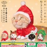 メリークリスマスだニャ サンタやトナカイに変身できる猫専用のかぶりものが登場