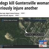 犬4頭に襲われ2名が死傷 近隣住民は1年前から不安を口に(米)