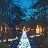 冬の光に誘われて♪ロマンチックなおすすめ夜デートスポット22【関東近郊】