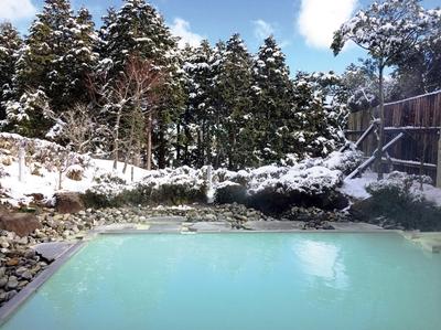 箱根湯の花 プリンスホテル
