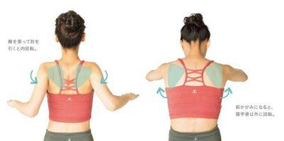 を 寄せる 甲骨 肩