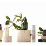 注目♡自然の恵みから生まれたチェジュ島の化粧品ブランド「イニスフリー」が本格上陸