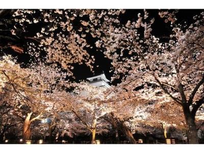 鶴ケ城公園ライトアップ
