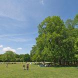 【東京都内】ピクニックにおすすめの公園20選!桜の名所・緑あふれるスポットなど