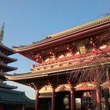 【東京都内】ひとり旅におすすめの観光スポット20選!定番タワーや美術館、動物園も