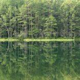 【全国】緑の絶景スポット31選!自然豊かな日本ならでは「緑の世界」でリラックスしよう。