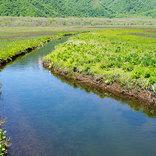 『春の小川』2番の歌詞に込められた思い出の景色