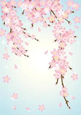 光前寺のしだれ桜