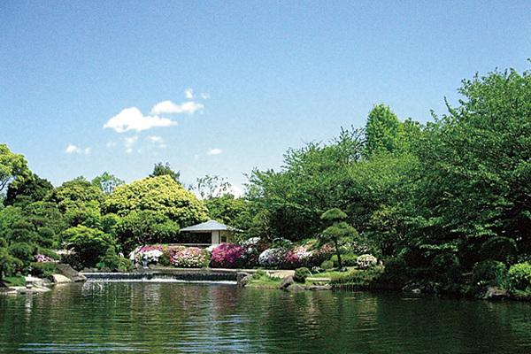 江戸川区行船公園(平成庭園・源心庵)
