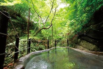 信州高山温泉郷 仙人露天岩風呂と渓谷美の宿 風景館