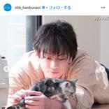 『半分、青い。』佐藤健×子猫の破壊力がハンパない!