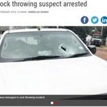 「心が満たされる」車に投石を続けた男に懲役10年(南ア)