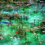 【全国】エメラルドグリーンの絶景スポット25選!自然が魅せる神秘の色が美しすぎる
