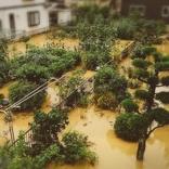 声優ライターが経験した「西日本豪雨災害の記録」