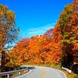 【東北】秋の日帰りドライブコースおすすめ12選!絶景紅葉・温泉・旬グルメを満喫