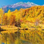 【長野】紅葉絶景を巡る!最高の「秋ドライブコース」おすすめ7選