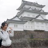 芸術、食欲、文学、実り、行楽。秋をまるごと楽しむ小田原5,000円旅
