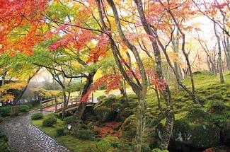 箱根美術館 神仙郷 茶室 真和亭