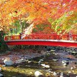 【関東近郊】デートで行きたい!紅葉絶景ドライブコース12選!2018年見頃情報も