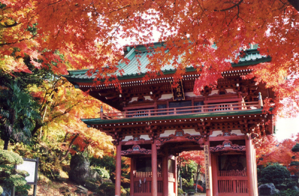 大雄山宝鏡寺