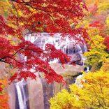 関東の「紅葉絶景」おすすめ20選!最高の秋景色が平成最後を彩る【2018】