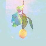 【ビルボード HOT BUZZ SONG】 米津玄師「Lemon」がDLを再び伸ばし首位をキープ、BUMPが追う