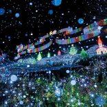 【関東近郊】クリスマスにおすすめ!2018年最新デートスポット50選