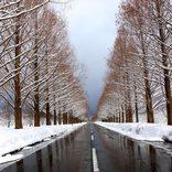 【関西】冬に行きたい!日帰りドライブおすすめスポット28選!