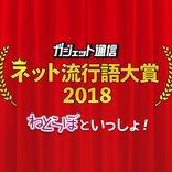 平成最後の『ガジェット通信 ネット流行語大賞2018 ねとらぼといっしょ!』一般投票スタート! 締切は11月27日24時