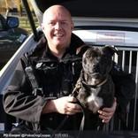 捨て犬だったスタッフォードシャー・ブル・テリアが優秀な警察犬に SNSフォロワーは8000人(英)