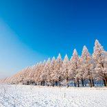 【関西近郊】冬のおすすめ日帰りデートスポット13選。感動の雪絶景も!