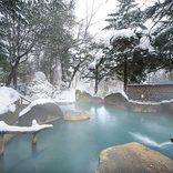 発表!2018年「ニッポンの温泉地番付」大人が選ぶ温泉地はどこ?【全国】