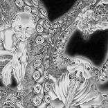 光宗薫が個展開催 0.7ミリボールペンでファンタジックな世界観を緻密に表現