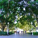 【世界の街角】オーストラリアの歴史が詰まったシドニー市民の憩いの場「ハイドパーク」