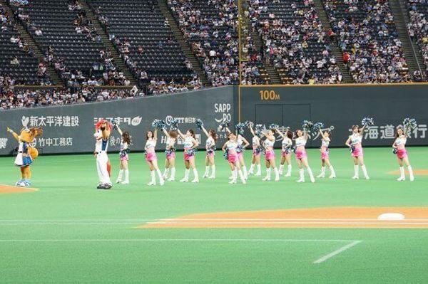日本ハムファイターズ 日ハム スポーツ 野球 激レアバイト タウンワーク