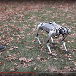 まさか4足歩行ロボットがバク宙するなんて…「ミニチーター」の驚くべき能力を確認できる動画がこちらです