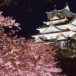 夜桜デートに!ライトアップがおすすめの「花見名所」10選【関西・中国・四国】