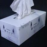 花粉症の救世主『鼻セレブ』 空き箱で工作したら、こんなに可愛い「お供」が誕生!